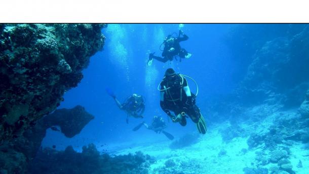 plongee sous marine hyeres giens var