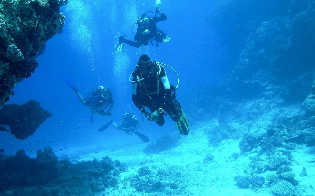 presqu'île de giens plongée sous marine var